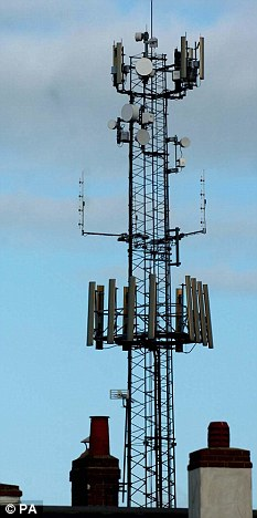 Why Fry « Cell phone, Tower, EMF Radiation and SmartMeter Health
